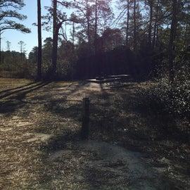Site 12 tent site no hook ups