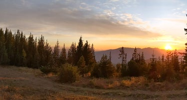 Baldy Mountain Dispersed Camping