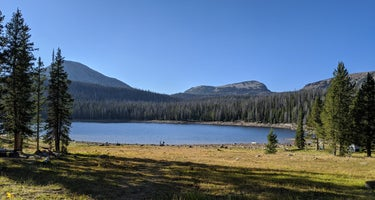 Trial Lake Campground