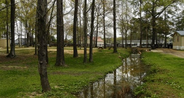 Mill Creek Marina and Campground