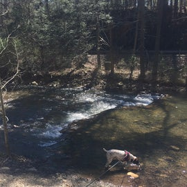 There's a steam that they stock with trout that runs aside the campground