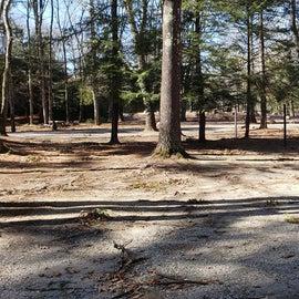 Hopeville Pond CG Site A1