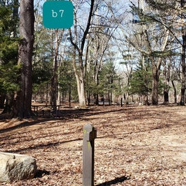 Hopeville Pond CG Site B7