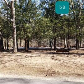 Hopeville Pond CG Site B8