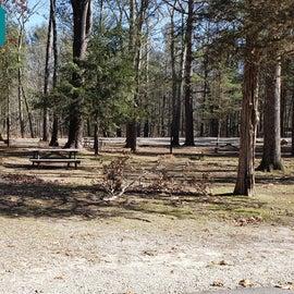 Hopeville Pond CG SiteB5