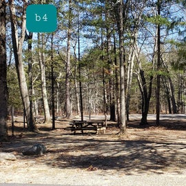 Hopeville Pond CG Site B4
