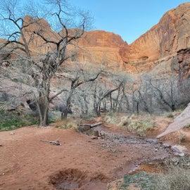 Creek going into canyon