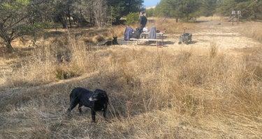 Ludington State Park: Jackpine Hike-In Campground