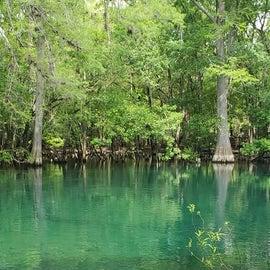 Beautiful clear springs