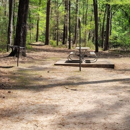 Large camping area  Site #22