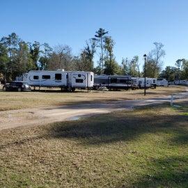 Lots of open area campsites.
