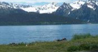 Alaska Waters RV Park