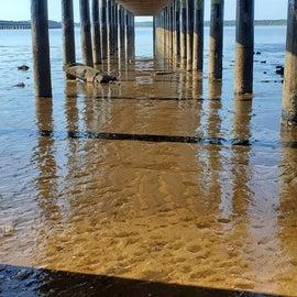 The fishing pier