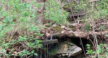 Waitsboro Campground - Lake Cumberland