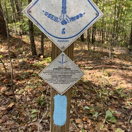 You can follow these tags along the whole Pinhoti trail