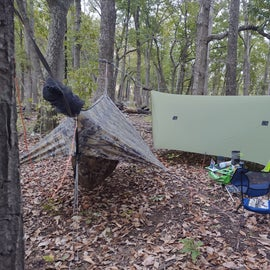great for hammock camping