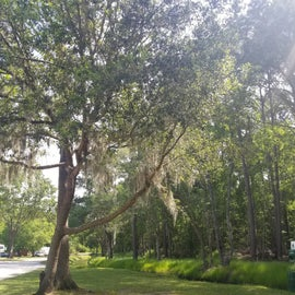 walking paths at campground
