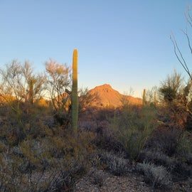 spectacular views of the Tucson mountains