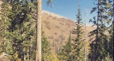 Clyde Creek Dispersed Camping