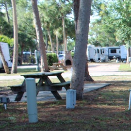 shaded camping area