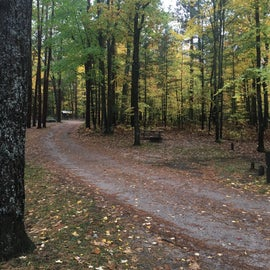 A phot of the campground in the fall