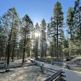Path to the head of the Metolius River-5 min walk,all paved.