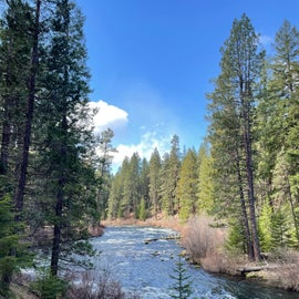 Walking along East Metolius River to bridge 99 North Trail 3.6 miles out and back.