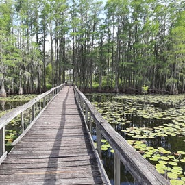 at one of the inlets in Mayo, FL