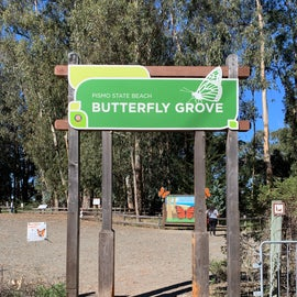 Monarch Butterfly Grove (free)