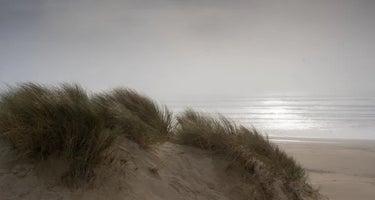 Oceano - Pismo State Beach