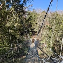 Suspension Bridge near Nature Center