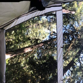 the view up from our tent was amazing and was so much fun to wake up to