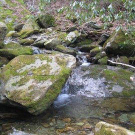 plenty of stream for water on lower elevation portions of trail