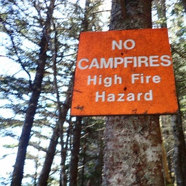 Despite the fire pits you will see, campfires aren't allowed.