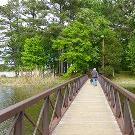 Bridge to Island Trail