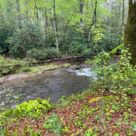 Another creek photo!