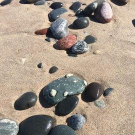 Rock hounded welcomed