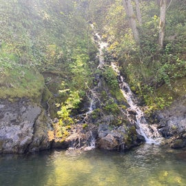 a little waterfall up river