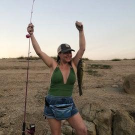 Catching a bass