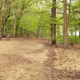 Siet 4 & 5 Glade Creek - walk-in