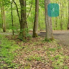 Site 4 Glade Creek Drive In