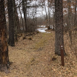 Secluded, wooded sites throughout the campground.