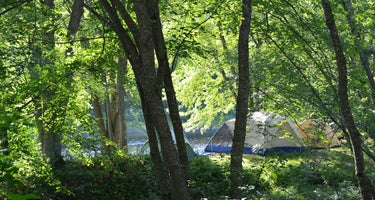Pine Grove Campground & Cottages