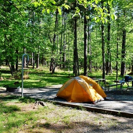 Another View of Campsite 69