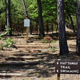Hattaway Mountain Trail is steep.