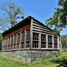 Dr. Kron's Greenhouse