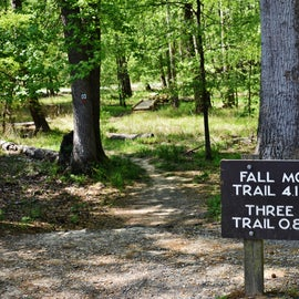 This is a relatively easy trail.