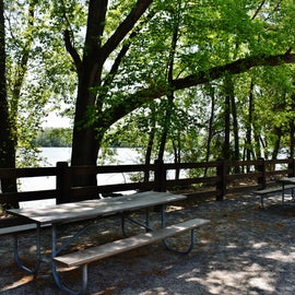 Picnic Area between the Boat Ramp and the Canoe/Kayak Rentals