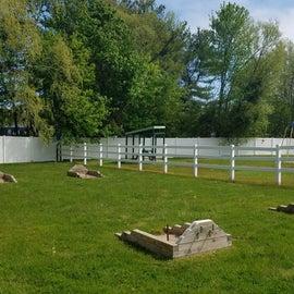 Horseshoe pits and playground