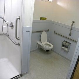 Shower/Toilet Combo